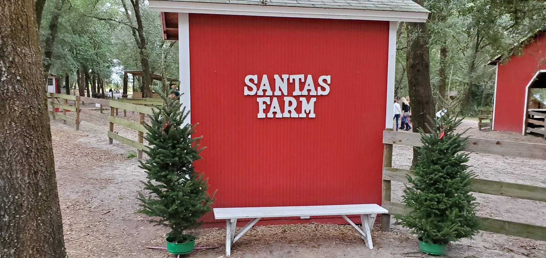 Fazenda de Árvores de Natal – Santa's Christmas Tree Forest
